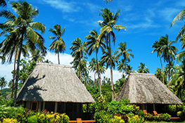 fiji travel insurance